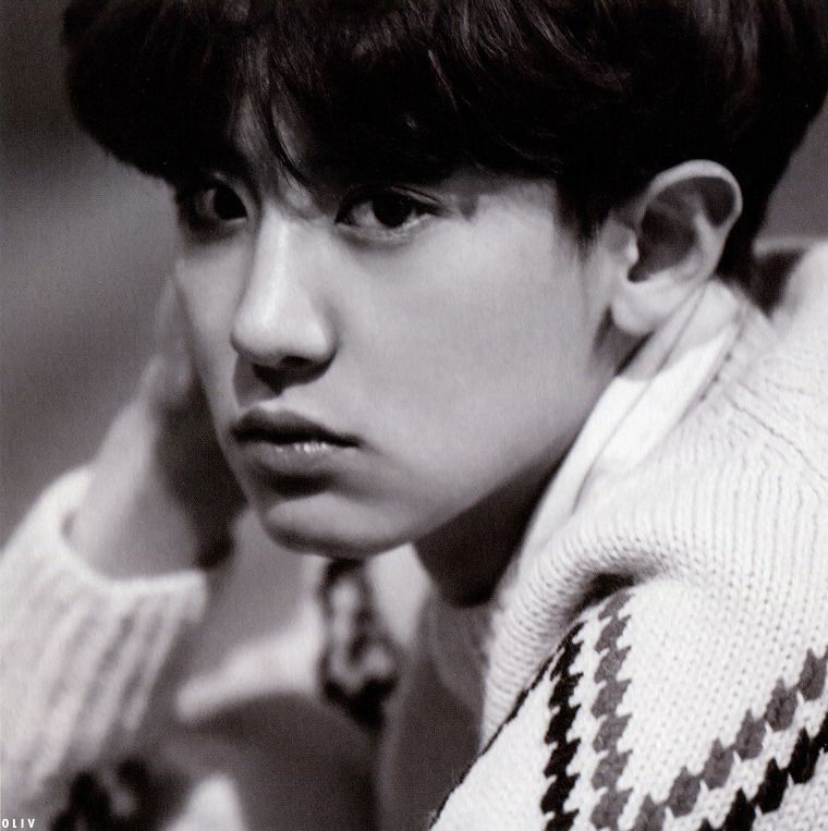 [SCAN/HQ] EXODUS ALBUM PB CHANYEOL :: OliV*올리브