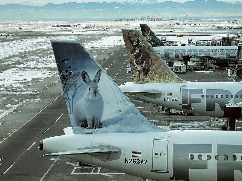 """Frontier Airlines Airbus A320214 N263AV """"Jack the Snow"""