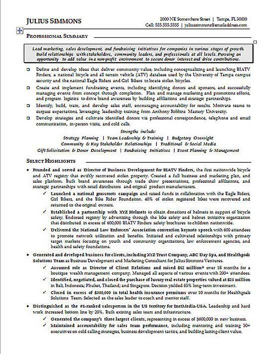 Marketing Executive Resume Writing Examples Executive Resume