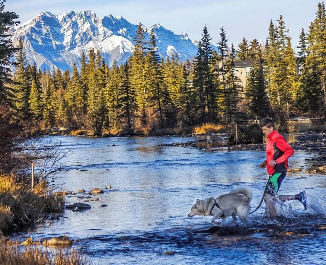 by @iron_explorer Don't be afraid to get wet                                #runningwithdogs #trailrunning #dogs #doglover #ilovemydog #dogsofinstagram