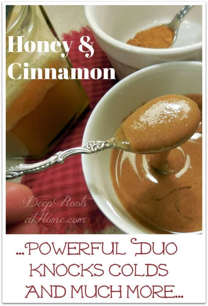 Honey and Cinnamon ~Powerful Duo Knocks Colds and Diabetes. See how together it increases their powe...