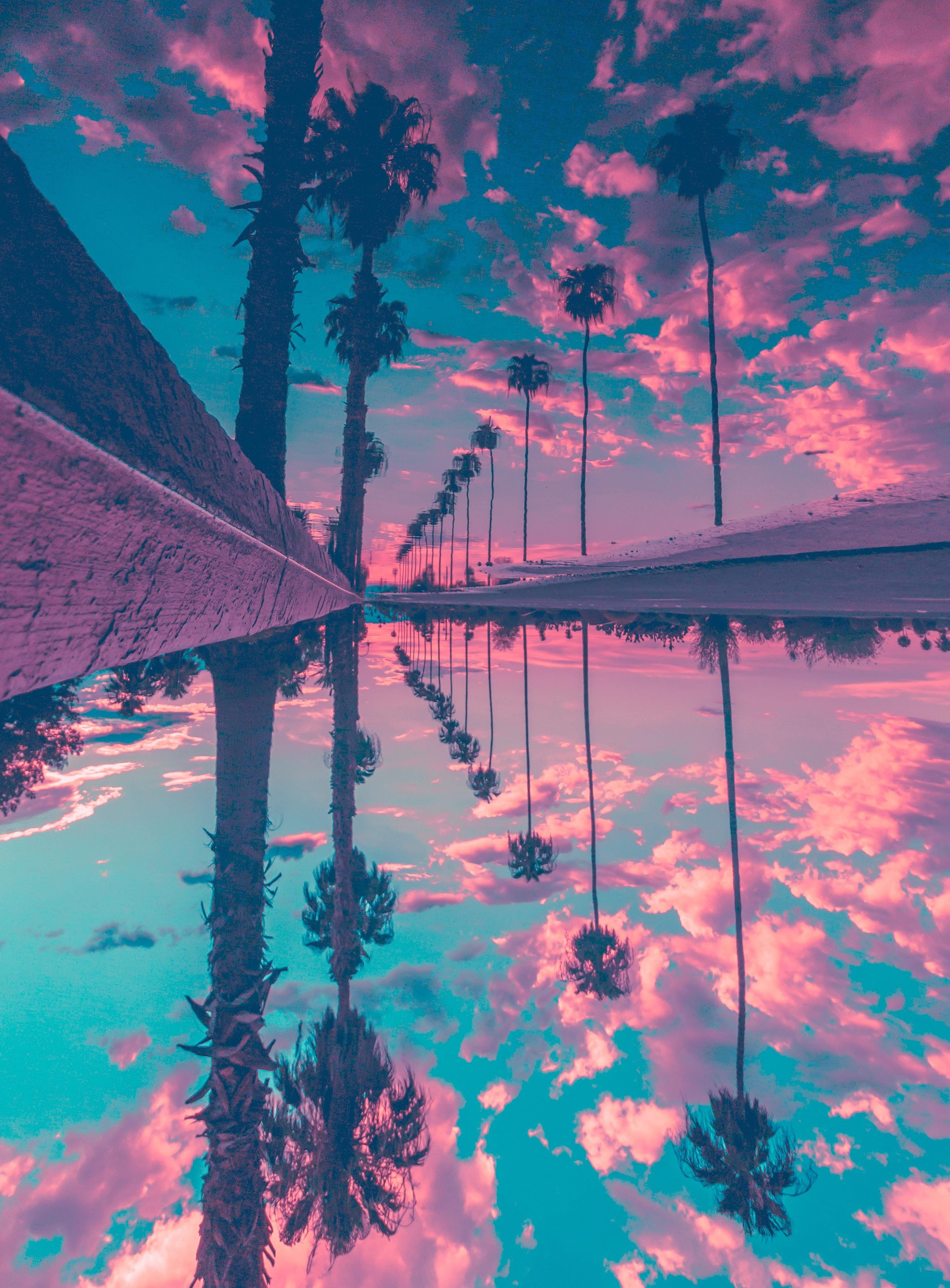 Sunset Palm Trees Sky Water Reflection Colorful Portrait Display 4k Wallpaper Hdwallpaper Des Blue Aesthetic Pastel Sky Aesthetic Aesthetic Wallpapers