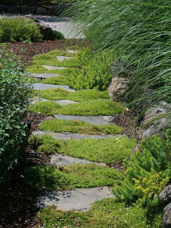 Am Nagement All E De Jardin Et Chemin De Pierre En 95 Id Es Elegance De Pierre Naturelle Et
