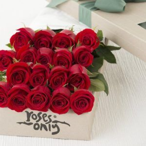 Rose bouquet images hd 1000 beautiful red rose bouquet - Bouquet of red roses hd images ...