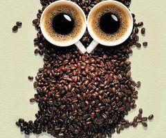 café for ever