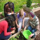 Redescrubriendo el sentido común | ECOagricultor