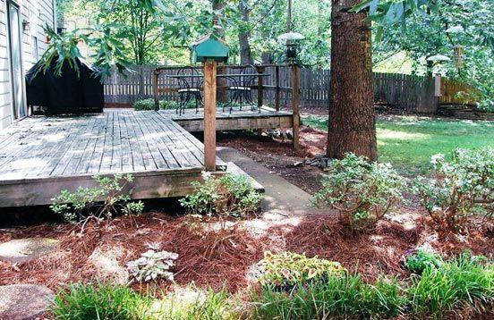 Browse Backyard Birds Backyard Landscaping Kid Friendly Backyard