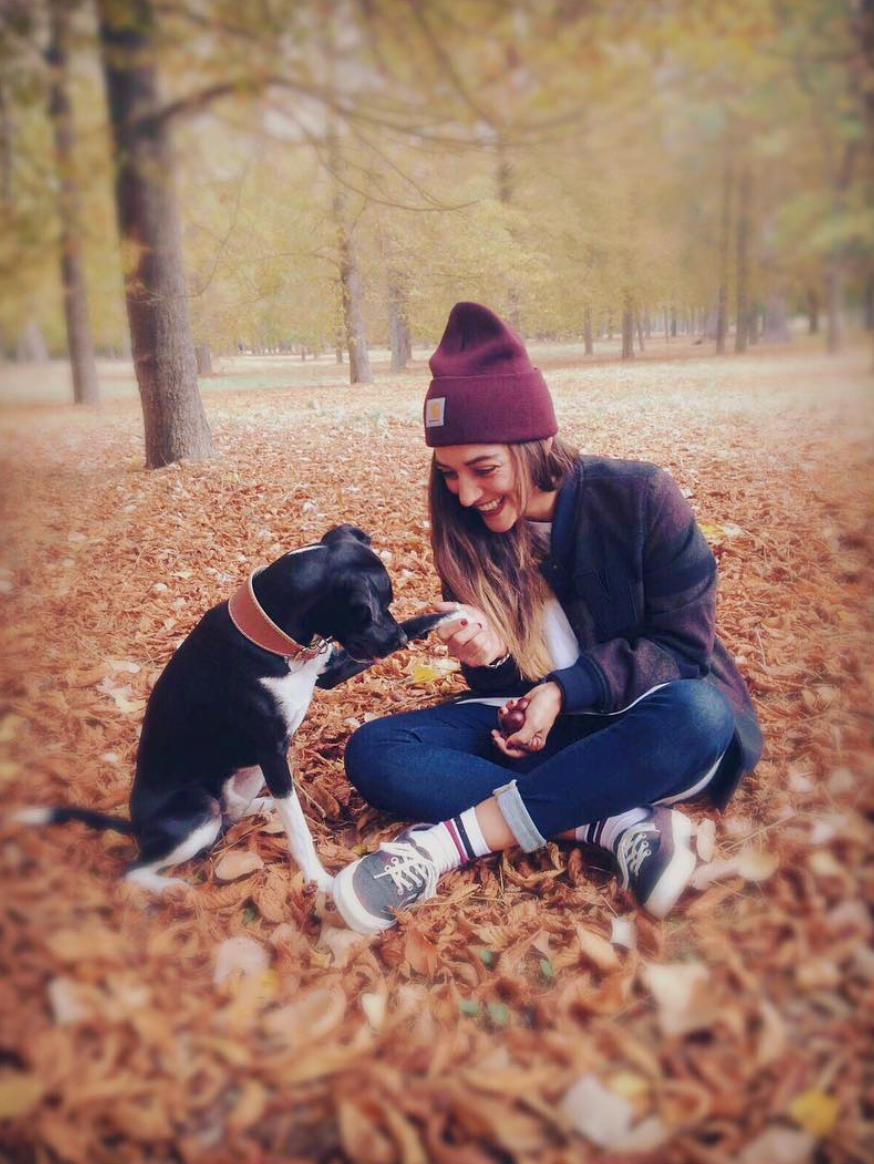 Fall is for frolicking in foliage with furry friends. Photo via fannywallride