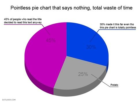 The 60 Silliest Pie Charts On The Internet Brain Bent Funny Pie