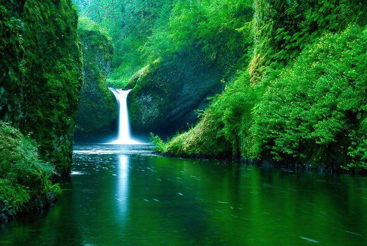 Moi Pour Alle Sur Une Ile Ou Dans La Foret Amazonienne Dessin