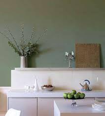 keuken olijfgroene muur - google zoeken - woonkamer uden, Deco ideeën