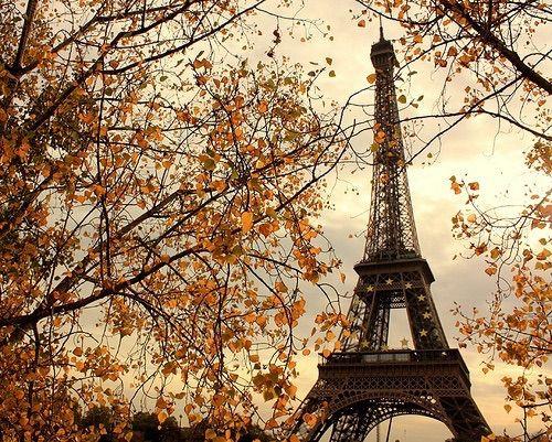 Imagen vía We Heart It #autumn #eiffeltower #fall #gorgeous #landscapes #paris #travel #autumnleaves