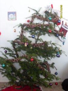 Ugly Christmas Tree.Pin On Motown Christmas