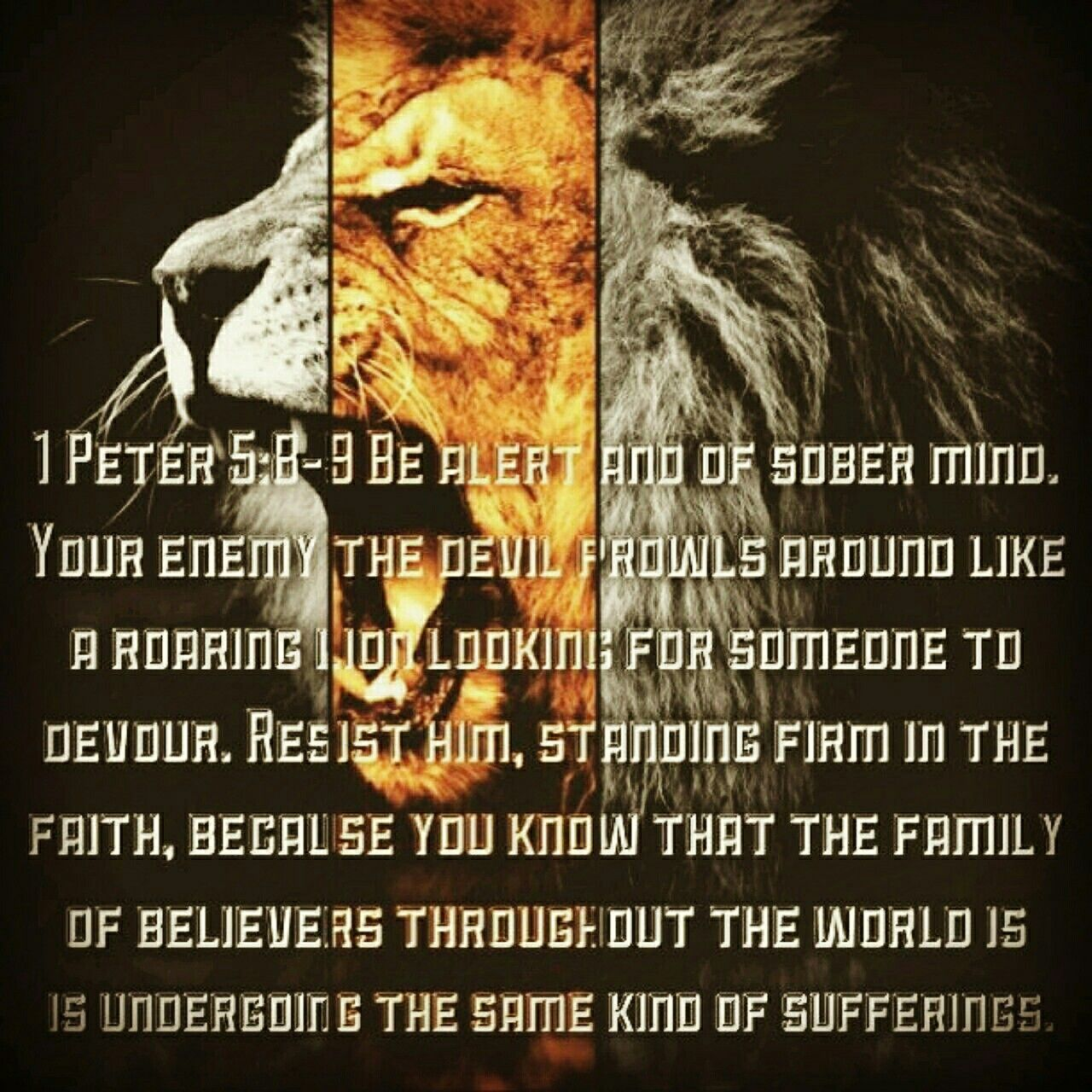 Be alert and of sober mind. Your enemy the devil prowls around like a roaring lion looking for someone to devour. Resist him, standing firm in the faith, because you know that the family of believers throughout the world is undergoing the same kind of sufferings. 1 Peter 5:8-9 NIV http://bible.com/111/1pe.5.8-9.NIV