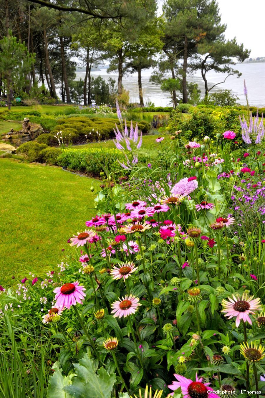 un jardin breton d agapanthes et d hortensias bleus 01 jardins pinterest jardins fleur. Black Bedroom Furniture Sets. Home Design Ideas