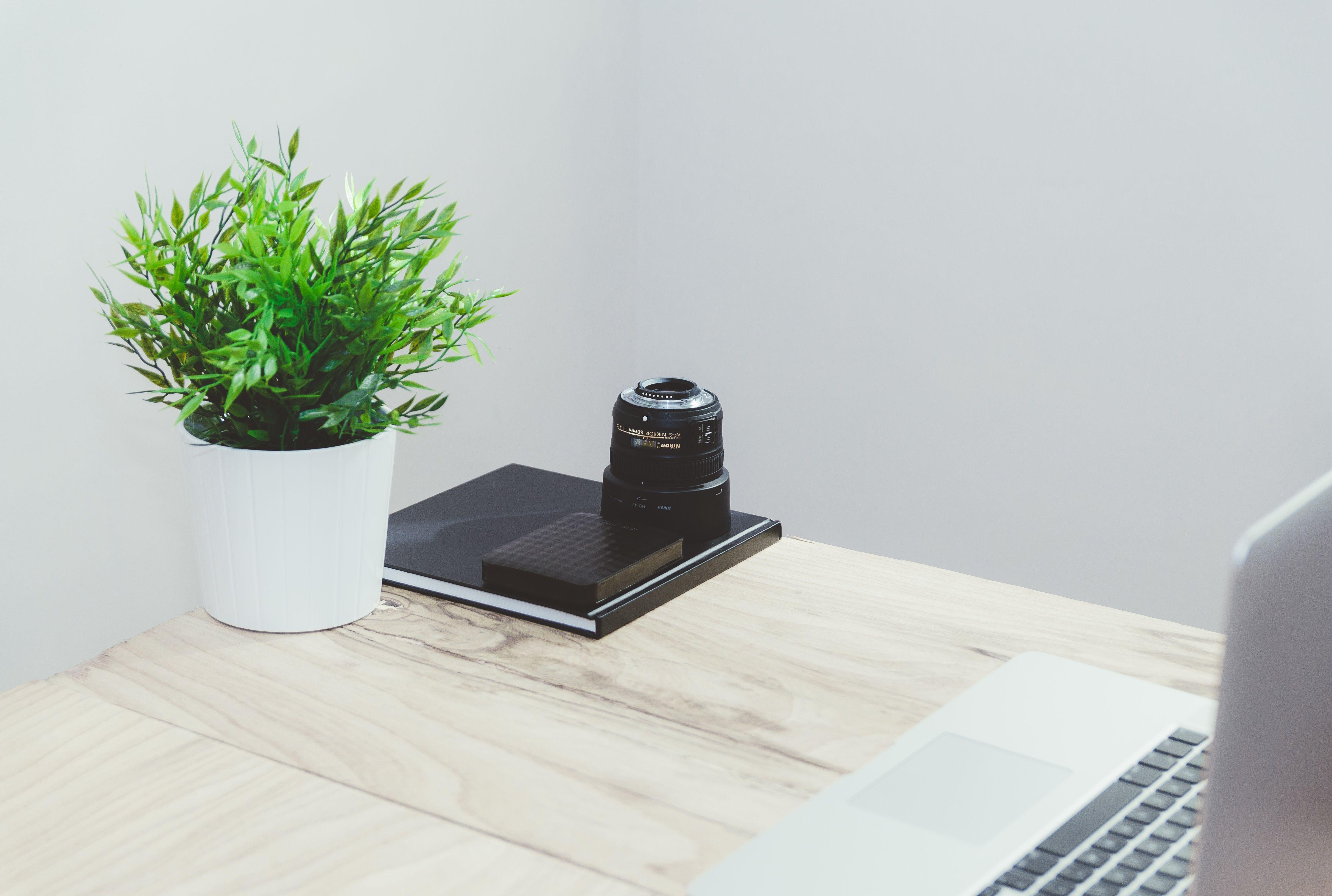 bureau zen plantes bois un lieu propice pour travailler en toute s r nit ambiance zen. Black Bedroom Furniture Sets. Home Design Ideas