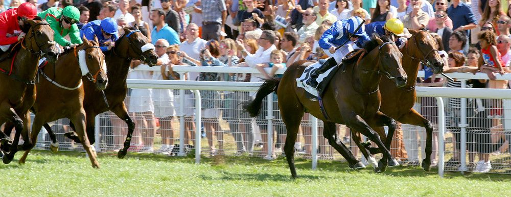 Muhaarar (GB) 2012 B.c. (Oasis Dream (GB)-Tahrir (IRE) by Linamix (FR) 1st Prix Maurice de Gheest (FR-G1,1300mT,Deauville) (photo: Scoopdyga)