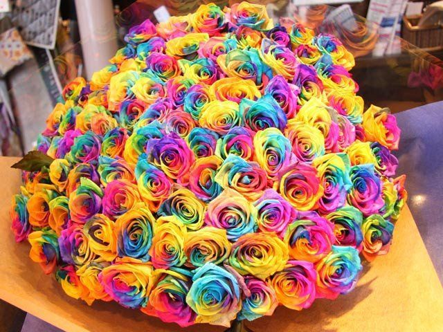Bunches Of English Roses Huge Bunch Of Rainbow Roses So Cool