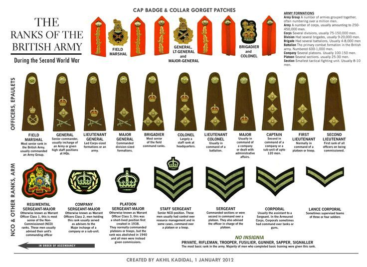 This Diagram Shows The Ranks And Their Symbols Within The British Army During The Second World