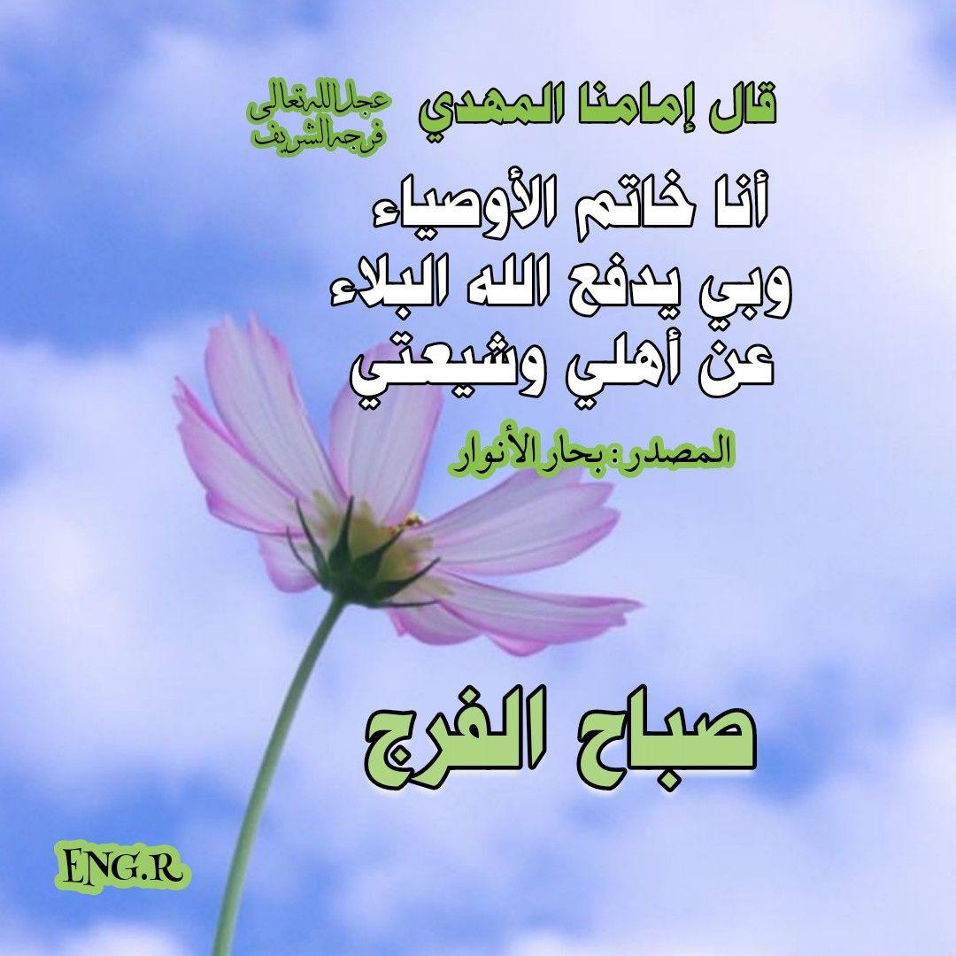 صباح الخير Imam Ali Quotes Proverbs Quotes Ali Quotes