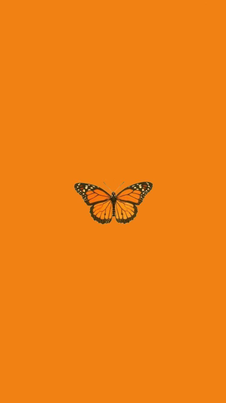 Pin On Disney Phone Wallpaper In 2020 Orange Aesthetic Butterfly Wallpaper Iphone Aesthetic Pastel Wallpaper