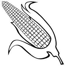 kukoricacső)