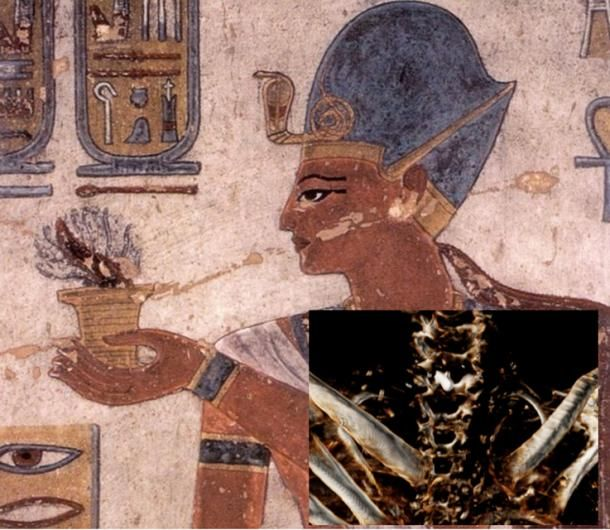 A theory about the assassination of Ramesses III has been confirmed by researchers at the University in Cairo. They say that he was killed by multiple assailants and given postmortem cosmetic surgery