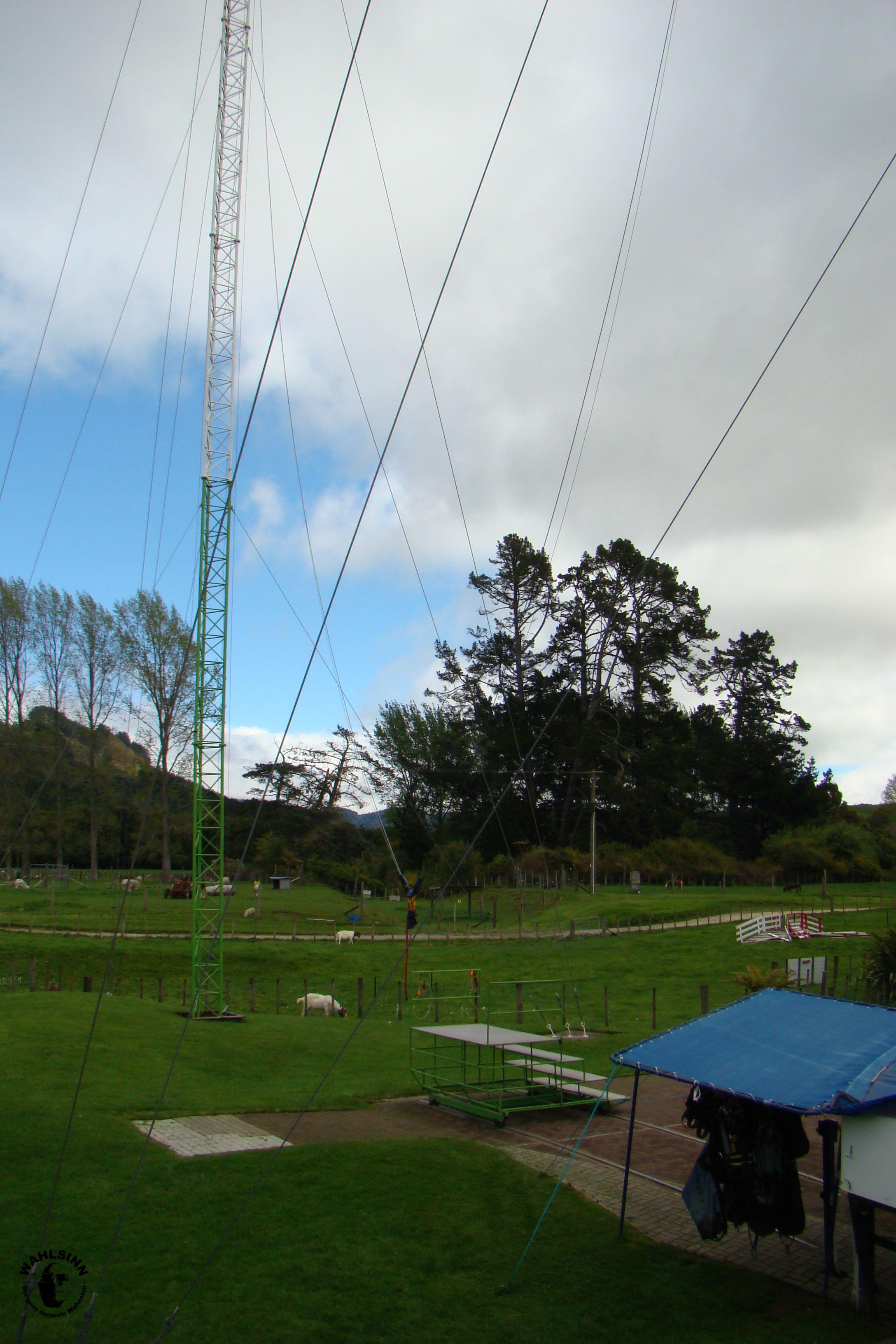 Swinnging / Swoop in Rotorua // Neuseeland