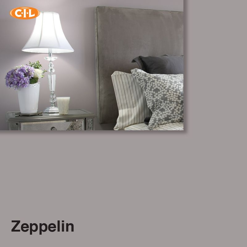 CIL zeppelin We finally chose our