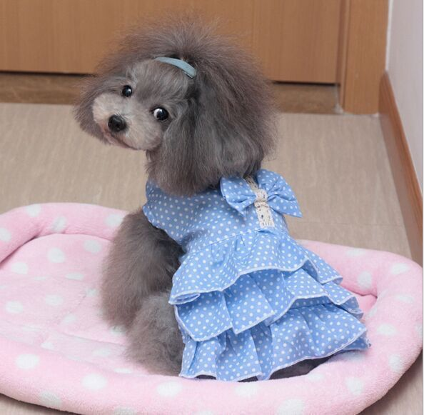 Type: Dogs Style: Sweet Material: 100% Cotton Season: Spring/Summer Model Number: DH109 Season: spring/summer Color: demin blue, light blue, pink Size: XS,S,M,L Gender: female Origion: Guangdong, Chin