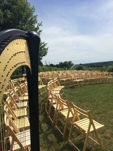 Harpist For Traverse City Vineyard Weddings Northern Michigan Wedding Music Ceremony At Ciccone