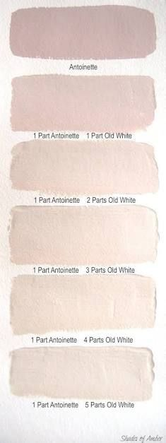 Image Result For Champagne Pink Color Interior