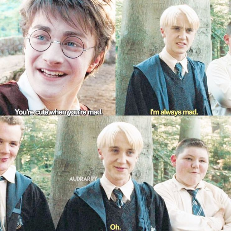Pin By Martin Jansen On Harry Potter Harry Potter Memes Hilarious Harry Potter Mems Funny Harry Potter Jokes