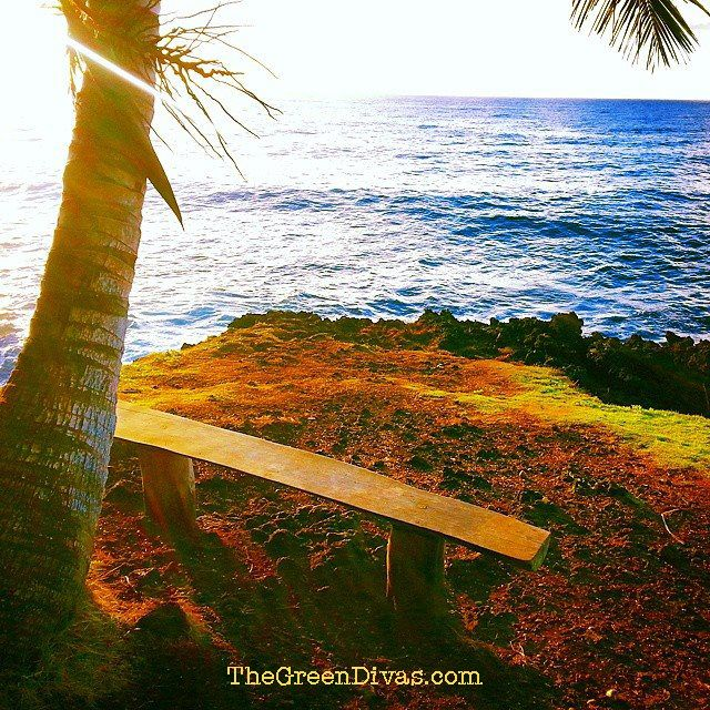 Green Divas in Hawaii Haikus, Geckos & Volcanos Oh My