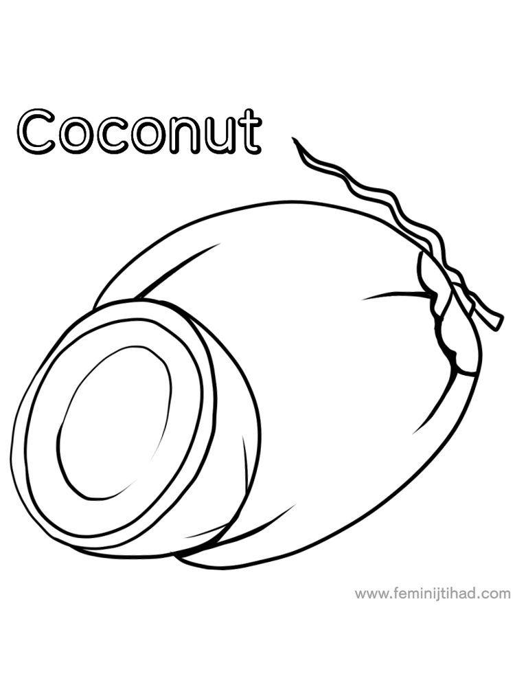 Coconut Coloring Page Buah