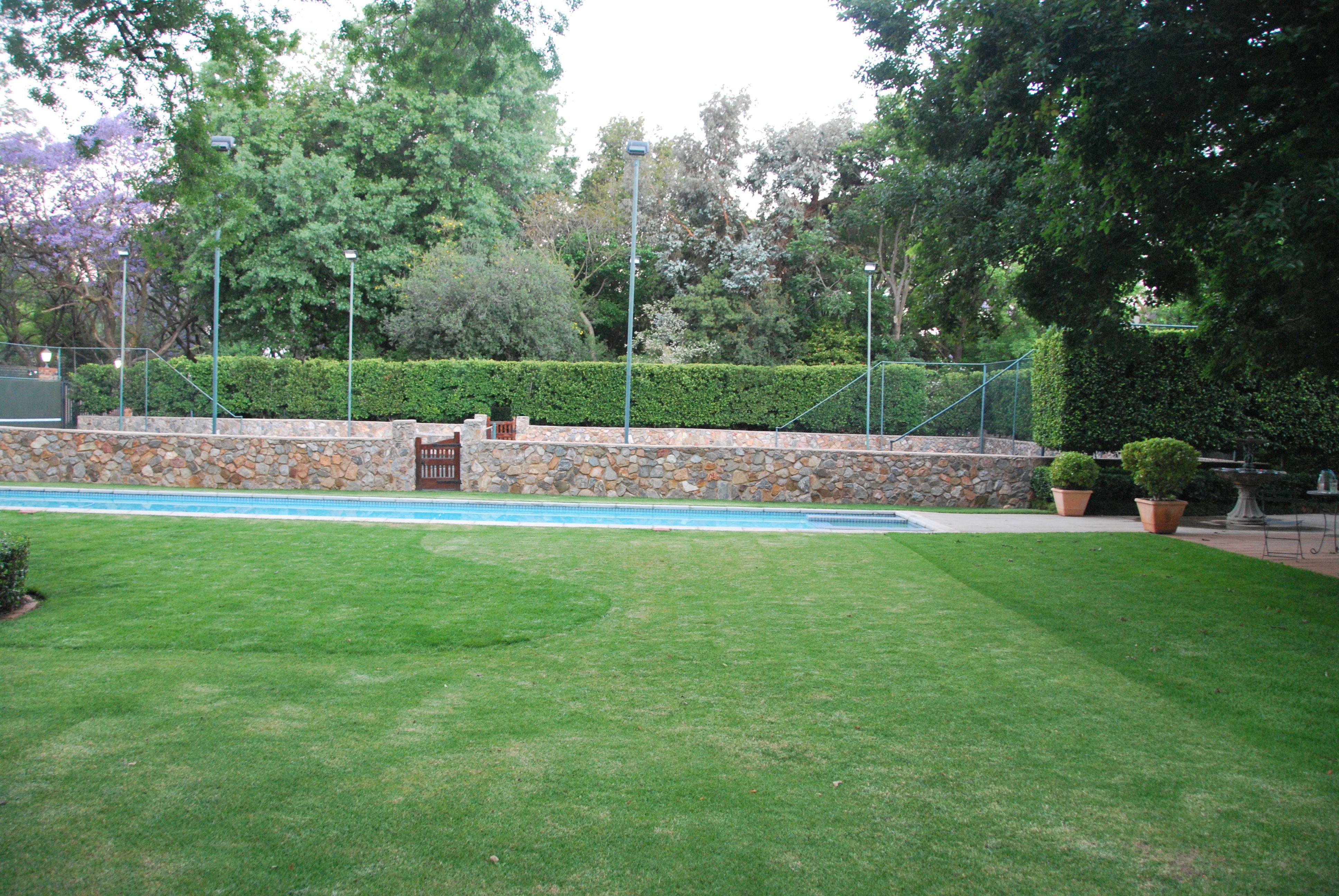 Tennis Court Hedge Tennis, Hedges, Golf courses