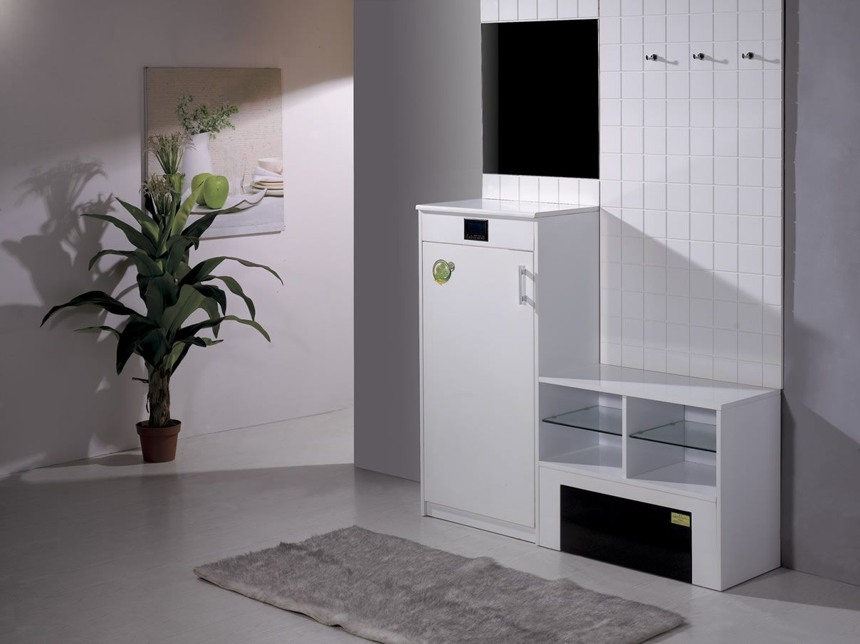 http://image.made-in-china.com/2f0j00OenaiDmzlPkv/Electrical-Shoe-Cabinet-XL-88-01-.jpg