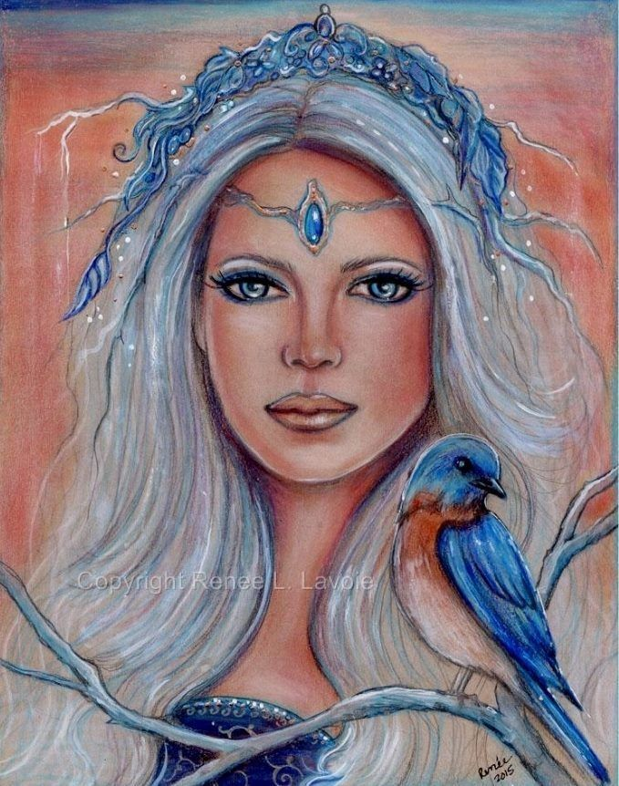 original 8x10 inches bluebird fae drawing on tan toned paper renee l lavoie realism