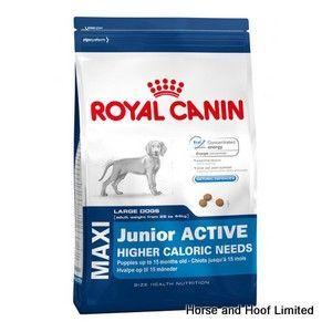 Royal Canin Maxi Junior Active Dog Food 15kg Dog Food Recipes