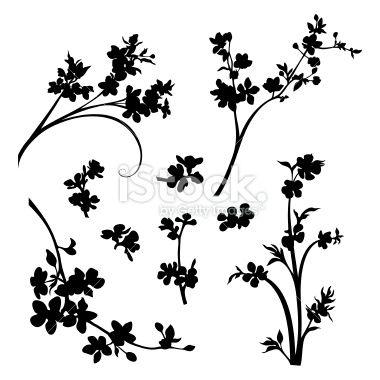 cherry apricot and sakura blossom tableau illustration. Black Bedroom Furniture Sets. Home Design Ideas