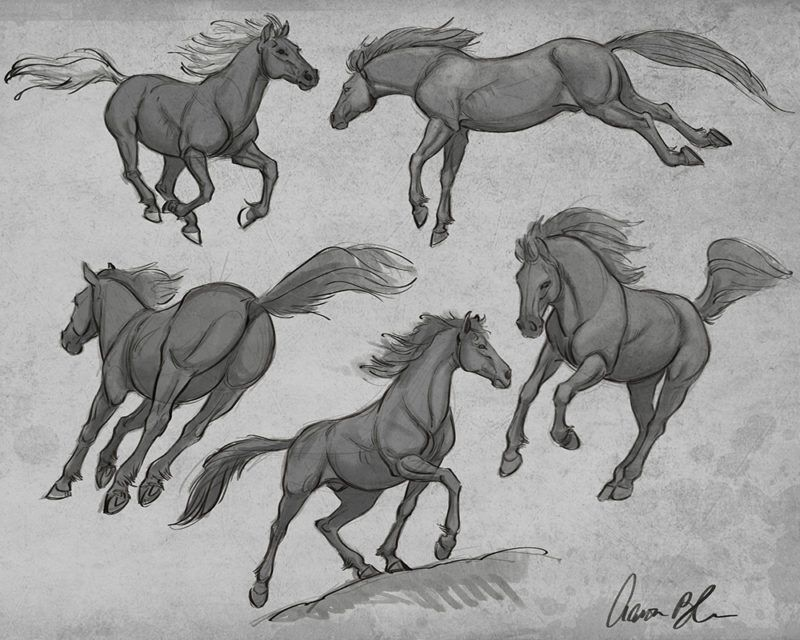 Learn How to Draw Horses from wildlife artist & master animator ...