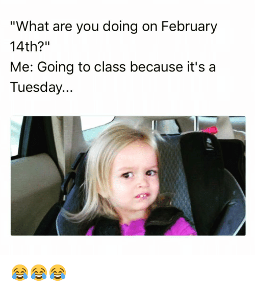 Memes And Are You Doing What Are You Doing On February 14th Me Going To Class Because It S A Tuesday Tuesday Meme Memes February