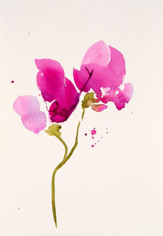 Sweet Pea Flower Watercolor Painting Original Watercolor Simple