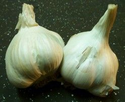Benefits of a Garlic Spray -    A homemade garlic spray has many uses and can be applied to vegetable, fruit, ornamental and indoor plants.