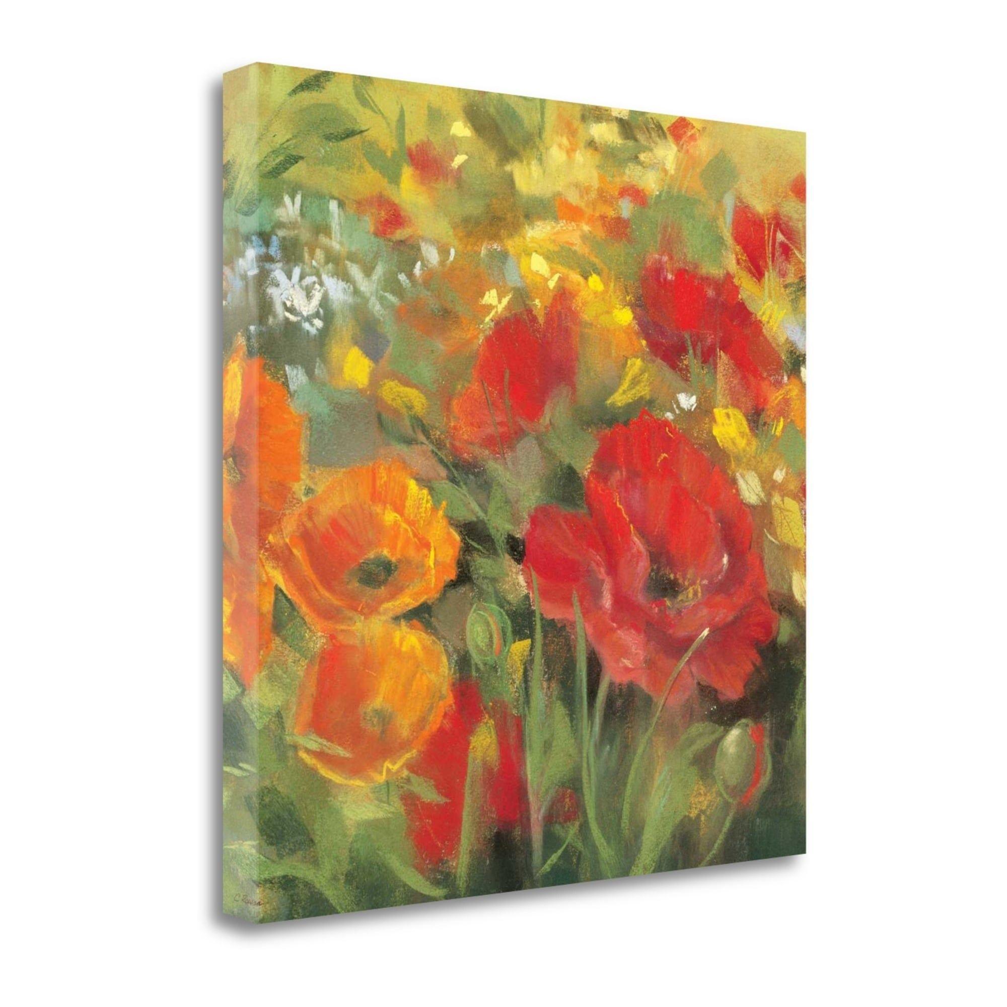 Tangletown Fine Art Oriental Poppy Field I By Carol Rowan,