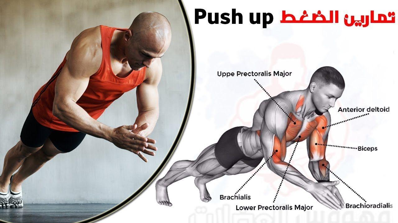 New Video By مهووس عضلات كمال الاجسام On Youtube تمارين الضغط البوش آب Push Ups شرح فوائد تمرين الضغط البوش أب كيف تصير أقوى في Deltoids Biceps Push Up
