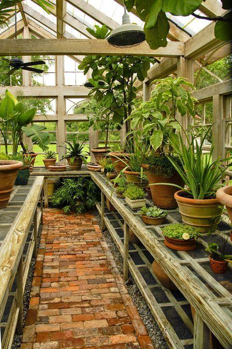 Pin de Cheryl Bartz en Planters   Pinterest   Invernadero, Vivero y ...