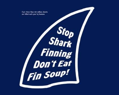 Stop shark finning dont eat fin soup !
