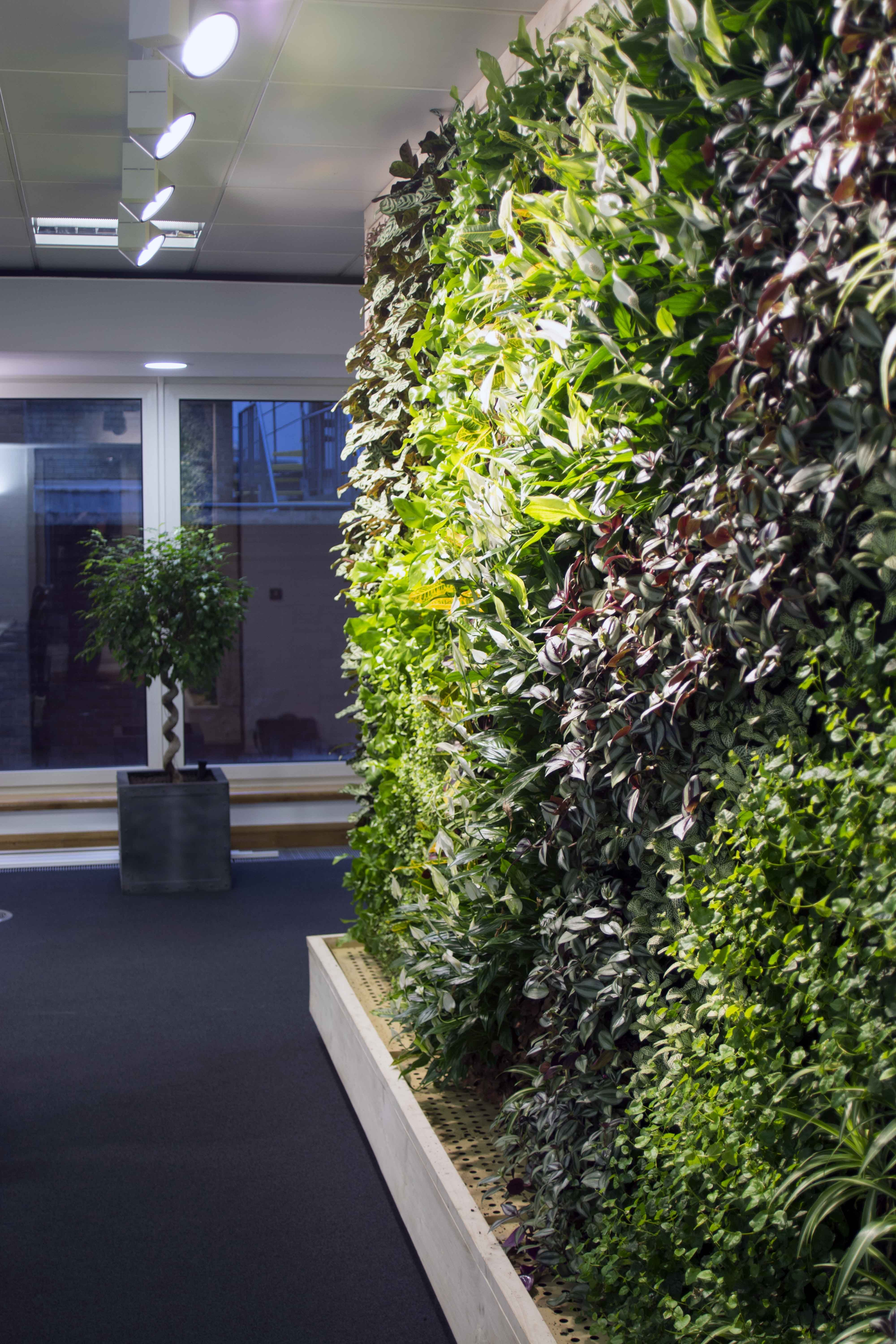 An Enterprise Green Wall In The City Of London Green Wall Garden Wall London City