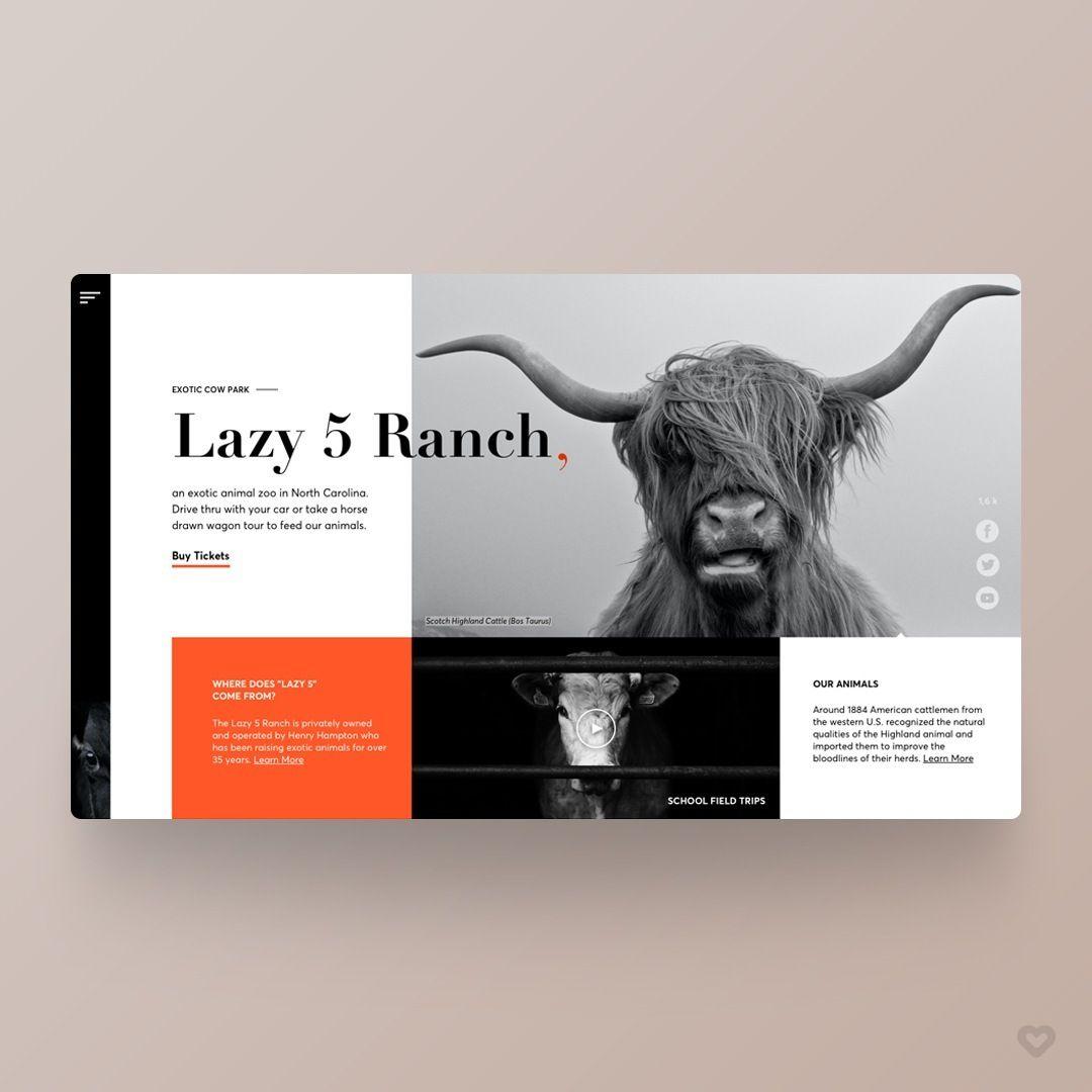 By Liza Sukhina Lamaartlab Follow Us Welovewebdesign Link Https Dribbble Com Shots 9687808 Mo In 2020 App Design Inspiration Web Design Web Development Design